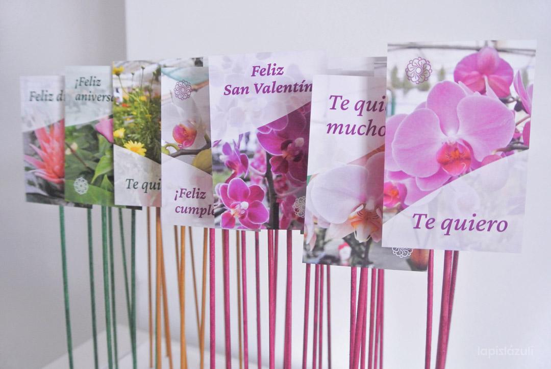 Diseño de tarjetas de regalo para plantas ornamentales. Orquídeas Las Mesas 2
